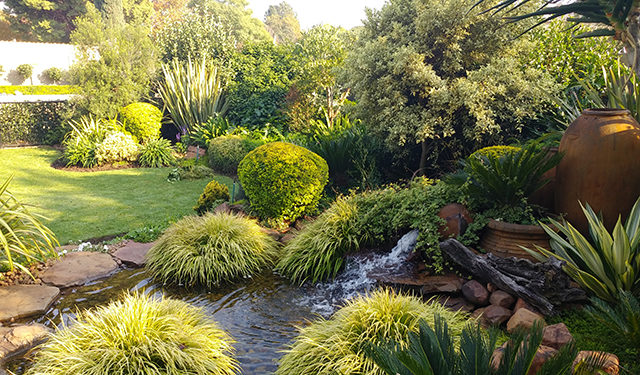 natural water features johannesburg